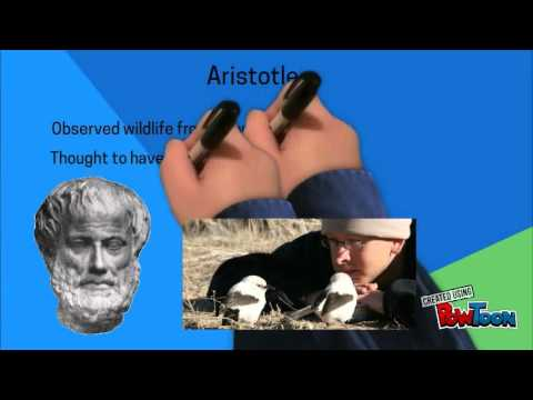 aristotle v plato Aristotle was 'the foal who kicked its mother' —dl, v 2 'it seems now possible to trace [aristotle's] progress from sharp and rather schematic criticism of plato to an avowed sympathy with plato's general.