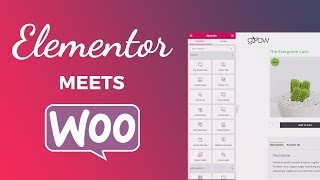 How to Make a Single Product Template for WooCommerce with Elementor Page Builder(, 2018-07-29T22:51:23.000Z)