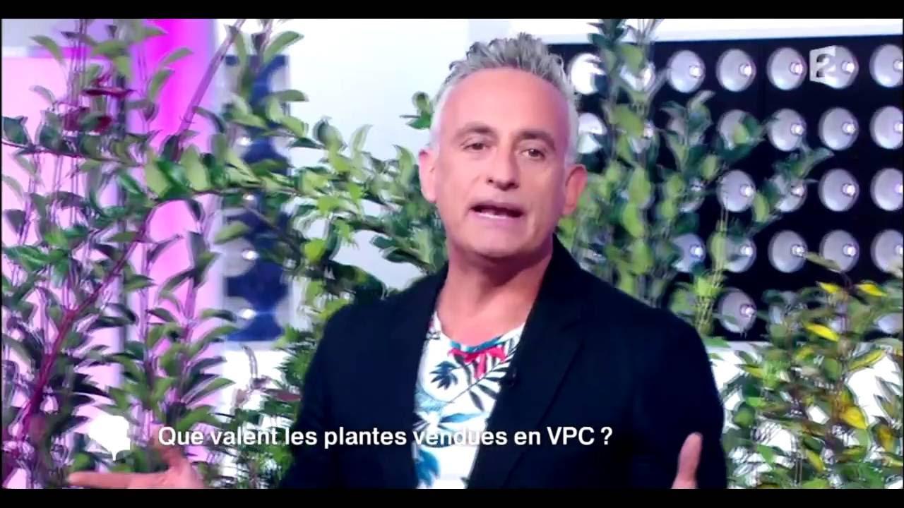 vente de plantes par correspondance bakker
