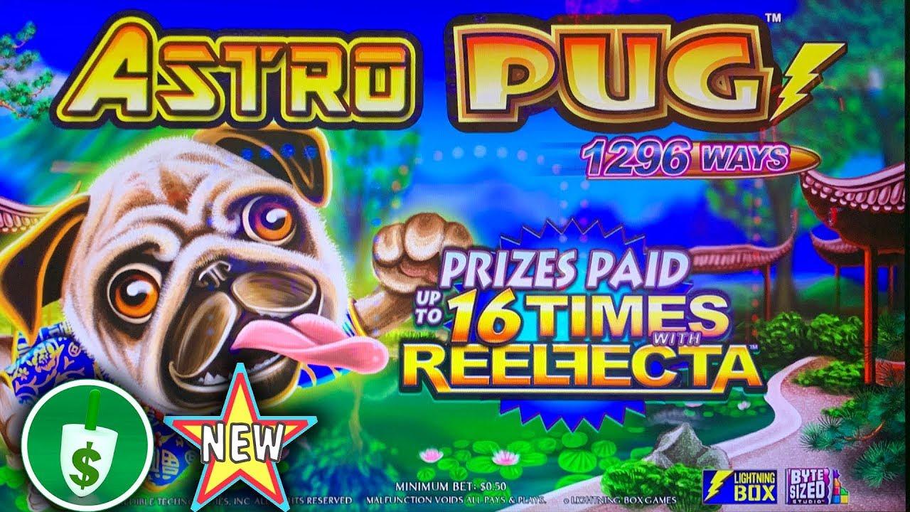 Astro Pug Slot Machine
