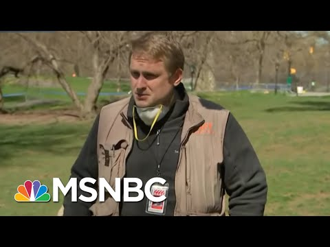 Doctor At Central Park Field Hospital Speaks On Treating Coronavirus Patients | Craig Melvin | MSNBC