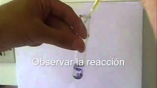 E4A 2011 Test de reconocimiento de Fenoles (Reaccion con Cloruro de Hierro (III))
