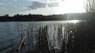Рыбалка на Кадамовском пруду Ловля карася на фидер
