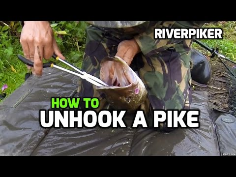How to unhook a pike - tutorial (video 50)
