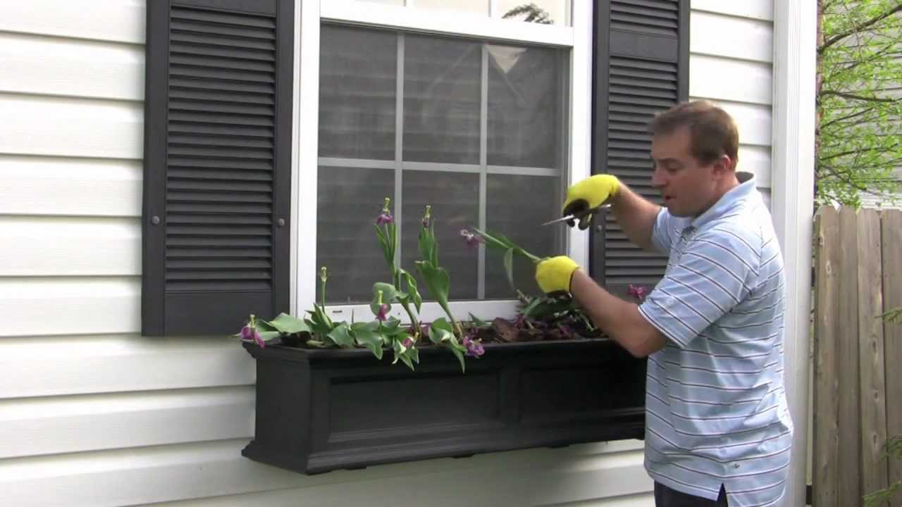 Part 1 The Window Box Guy 732 701 7561 Removing