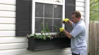 Part 1 - The Window Box Guy™, (732) 701-7561, Removing Spent Plants, Window Boxes, Window Planters