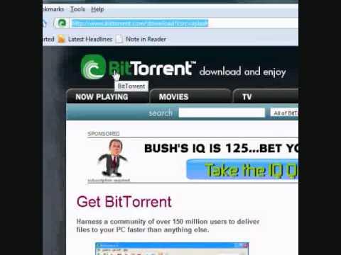 Deutsche Torrent Seite Torrent.to Offline Alternative Bitreactor.to Down Ersatz