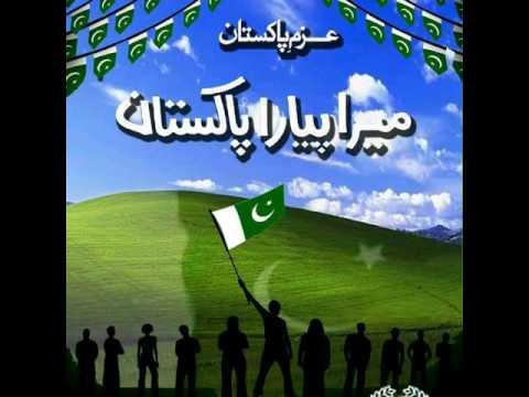 Pak Sarzameen Party PSP Song