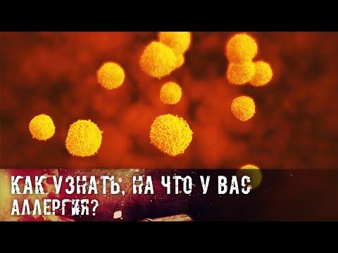 Аллерген как причина иммунопатологической реакции организма