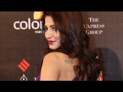 Shruti Hassan @ Colors Screen Awards 2013 Travel Video