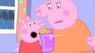 小猪佩奇 | 精选合集 | 1小时 | 小猪佩奇的泰迪熊湿透了 💧 粉红猪小妹|Peppa Pig Chinese |动画