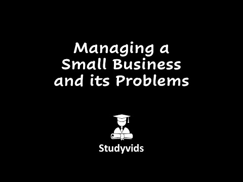N0906D  Small Business Weaknesses
