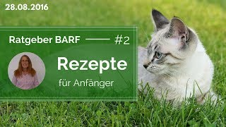 Katzen barfen - 💡#2 - Anfänger Rezepte