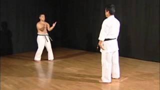 Sanchin Kitae Kata - Uechi Ryu / Shohei Ryu