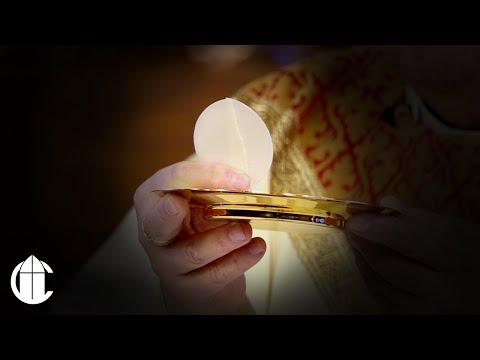 Catholic Mass: 1/17/20 | Memorial of Saint Anthony