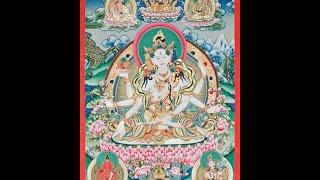 H E  Garchen Rinpoche  Ushnisha Vijaya Empowerment & Teachings   trimmed