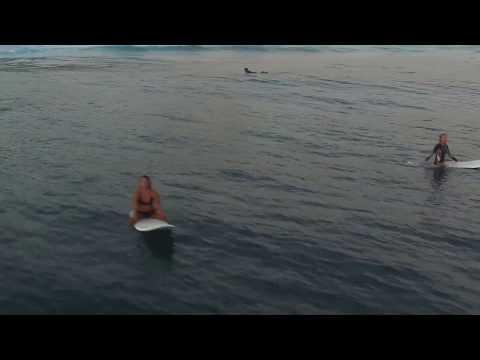 Surfing Dominican Republic