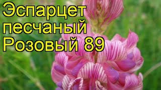 видео Лучшие многолетние медоносы: список растений, полезные свойства медоносных трав