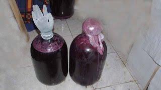 Домашнее вино из винограда Кудерка урожая 2015