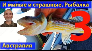 Морская рыбалка видео для рыбаков Океанские рыбы и твари лучшее Часть 3 видео 416
