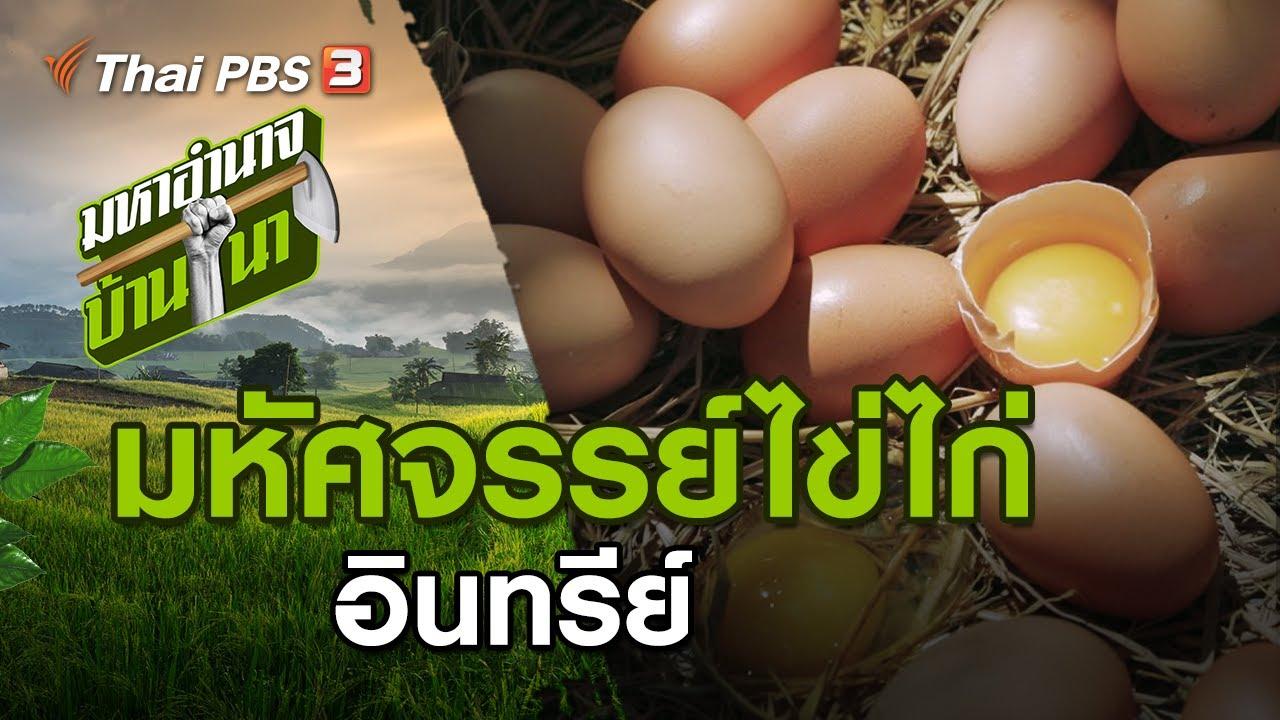 มหัศจรรย์ไข่ไก่ : มหาอำนาจบ้านนา (19 ก.ค. 63)