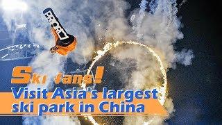 Live: Ski fans! Visit Asia's largest ski park in China夜间滑雪是一种什么样的体验?