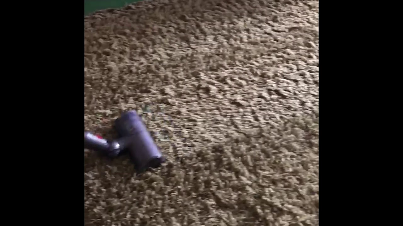 Dyson Cordless Vacuum Shag Rug Demo (Or
