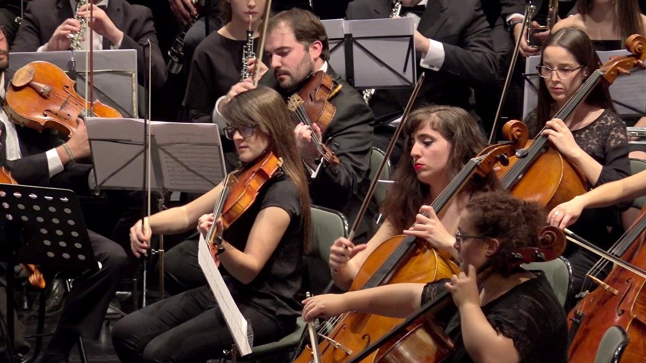 Resultado de imagen de la joven orquesta del mediterráneo