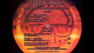 rabbit-in-the-moon---phase-1