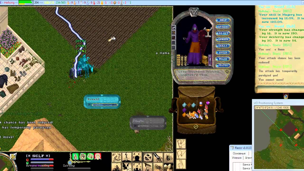 ultima online mystic mage mp4 youtube