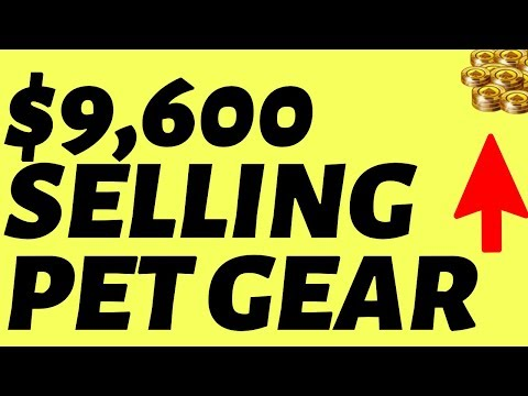 $9,600 Per Month Selling Pet Products Online (REPEATABLE)