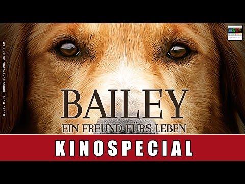 Bailey - Ein Freund fürs Leben - Kinospecial | Florian David Fitz