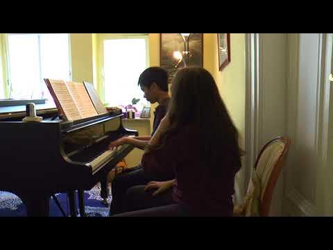 WIPC Transformation of mastery, Mozart Concerto Nr.21, 3d mov, with Plub (17.04.18) 2