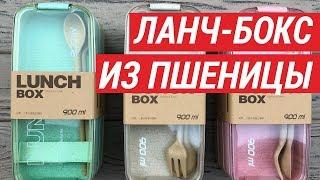 Обзор ланч-бокса из пшеничного волокна. Эко ланч-боксы в Украине