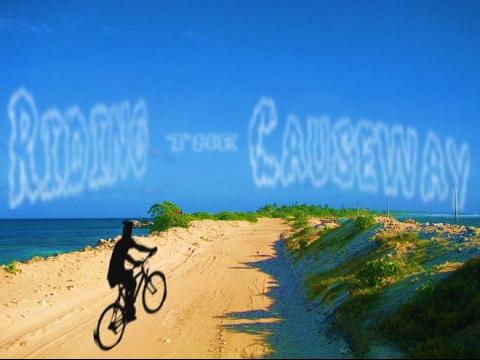 Causeway Bike Ride in June