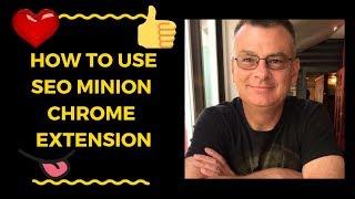 How to Use SEO Minion Chrome Extension