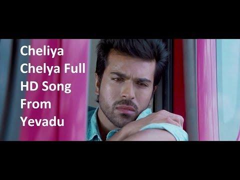 Cheliya Cheliya Full HD Song From Yevadu    Ram Charan, Allu Arjun, Sruthi Hasan