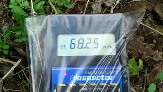 私個人による 福島県伊達市霊山町 小国小学校の計測