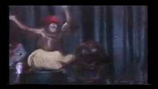 Orangutang 1 - Don't Miss This !!! Funniest video ever !!!