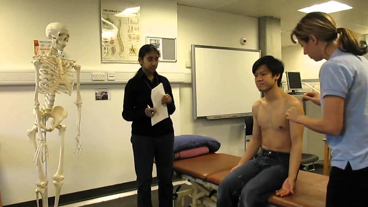 Anatomy viva questions