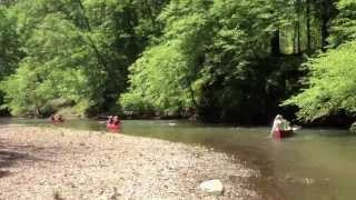 Freshwater Land Trust Cahaba River Canoe Trip in HD