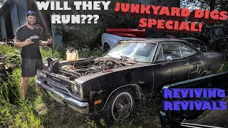 Reviving all of JUNKYARD DIGS revivals in ONLY ONE DAY! WILL THEY ALL RUN? Sally's Speed Shop Ep. 20