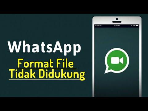 WA ANDA ERROR TIDAK BISA UPLOAD FOTO DAN VIDEO | Whatsapp tidak Bisa unggah foto.