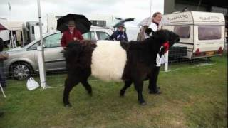 Dumfries and Lockerbie Show 2011