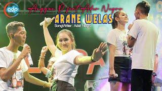 Anggun Pramudita Ft Ader Negro - Arane Welas (Official LIVE)
