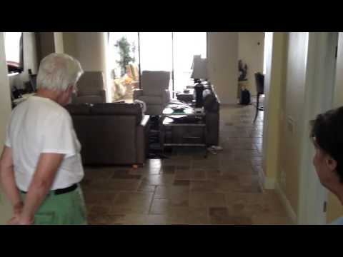 Coton de Tulear - Front Door Manners - Dog Training of Fort Myers