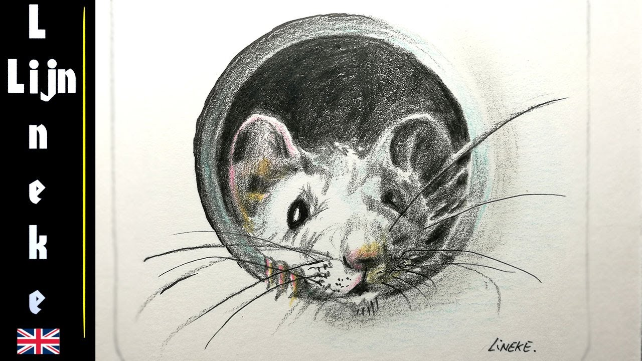 how to draw mouse with color