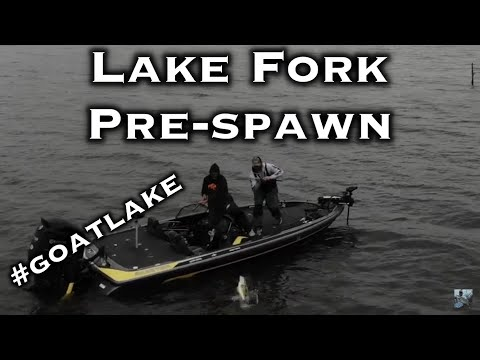 Lake Fork Bass Fishing: Greatest Trophy Bass Lake Of All Time!!!