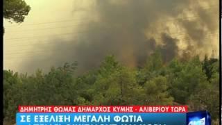 www pro com gr Πυρκαγιά από την Εύβοια