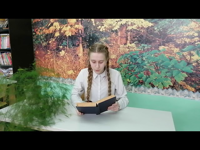 Изображение предпросмотра прочтения – ТатьянаГолоктионова читает произведение «Вот опять окно» М.И.Цветаевой